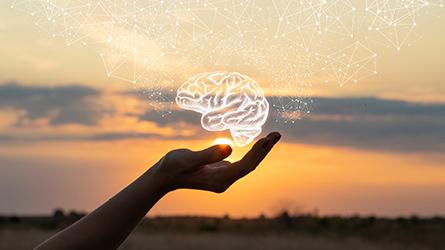 mão segurando uma ilustração de um cérebro em um campo no pôr do sol